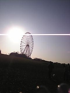 Image164.jpg