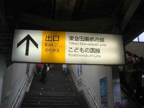 kinako8.jpg