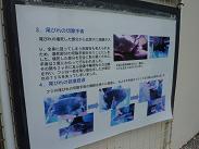 コピー ~ 2009.6沖縄 082