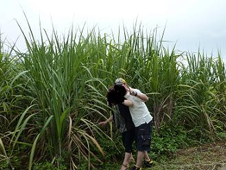 コピー ~ 2009.6沖縄 114