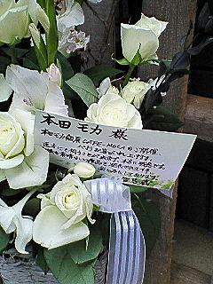 NEC_0099.jpg