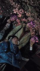 09夜桜14