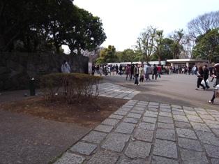 Yoyoko_20090405.jpg