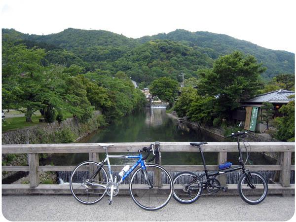 IMG_8019katsuragawapota09.jpg