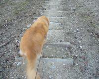 階段は慎重に!