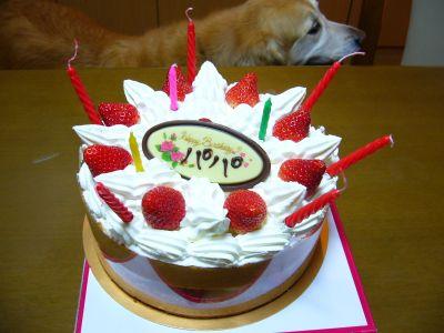 もぐーパパのお誕生日ケーキ
