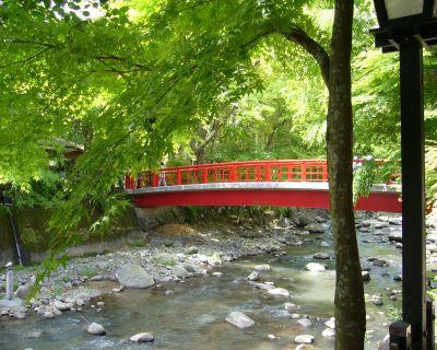 赤い橋と緑のもみじ