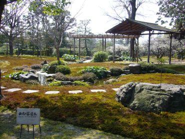 曲水の宴のお庭