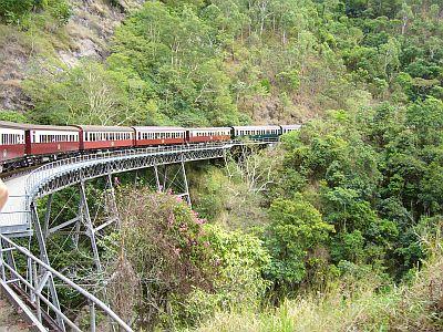 熱帯雨林の中をゴトンゴトン
