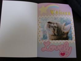 1ページ目は