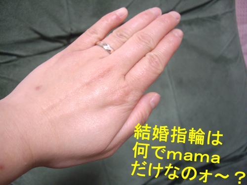 001_convert_20090325193355.jpg