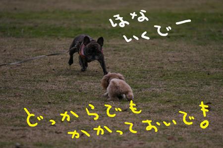 IMG_10.jpg