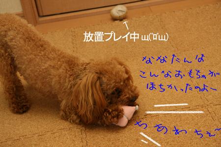 IMG_1414.jpg