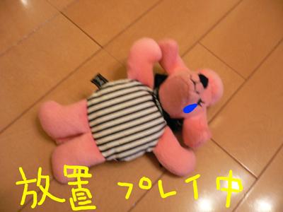 P1020340.jpg