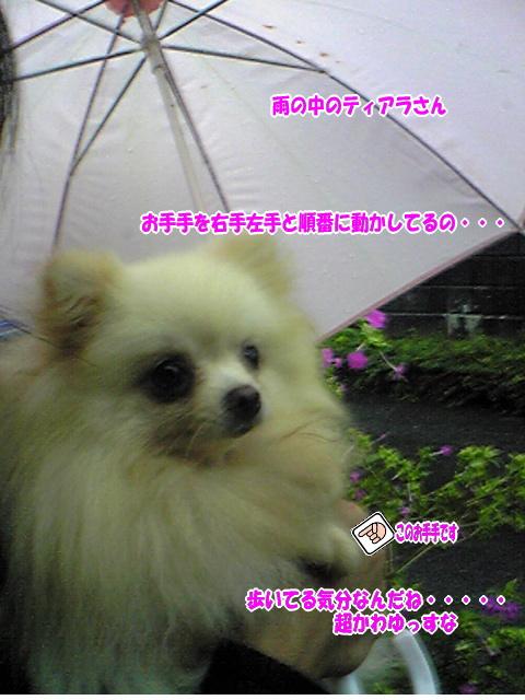 Image765~00