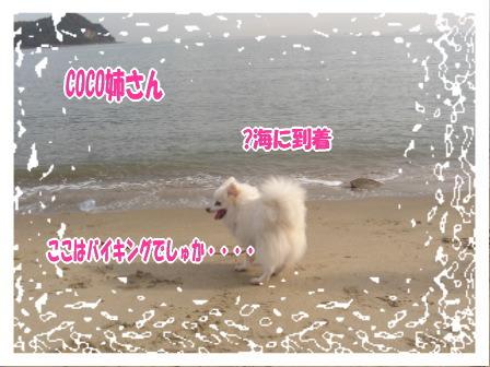 CIMG0644.jpg