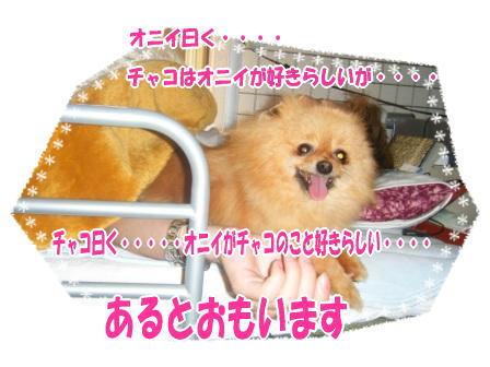 DSCF0436.jpg