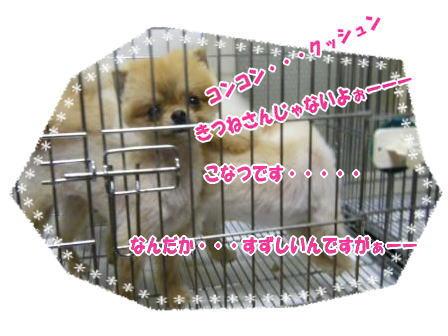 DSCF0558.jpg