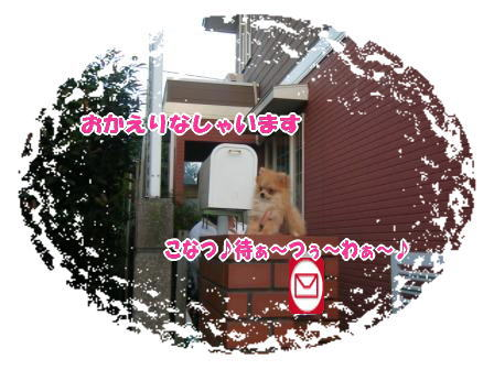 DSCF3038.jpg