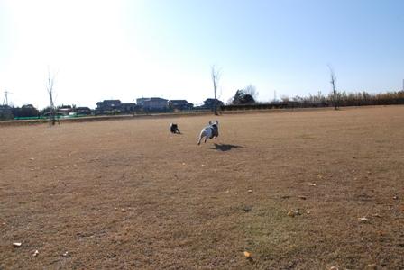 ひろ~い公園