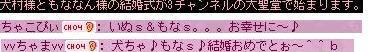 20071008112736.jpg