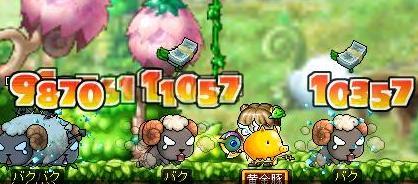 20071030113544.jpg