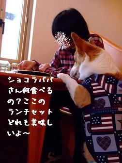 20080224112521.jpg