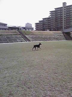09-03-12_009_320.jpg