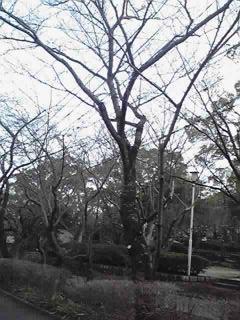 09-03-12_022_320.jpg