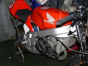 x-P1180657.jpg