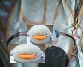 「柚子里&美奈都&要」描き下ろしベッドシーツ