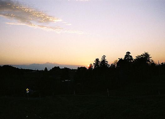 1129_01.jpg