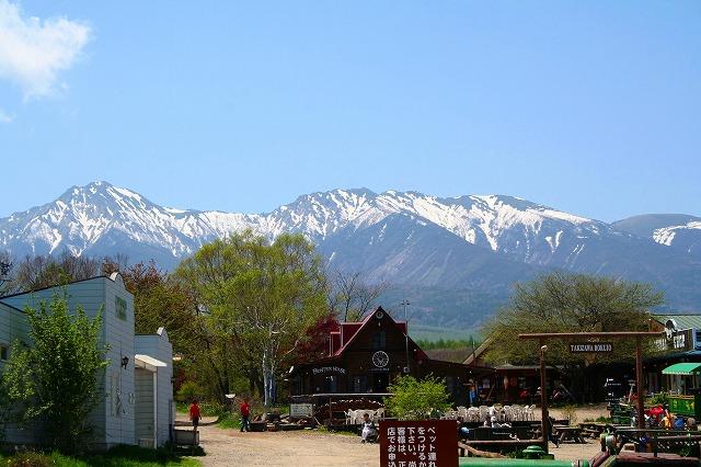 八ヶ岳060521-2