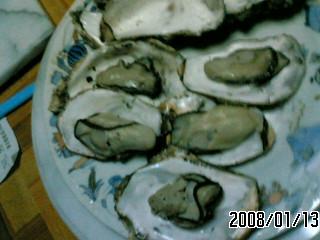 PA0_0002_20080124051301.jpg