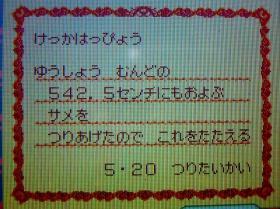 P1050630.jpg
