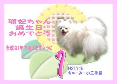 瑠妃カード