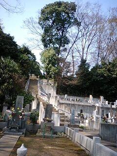 cyotokuji04.jpg