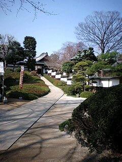 cyotokuji05.jpg