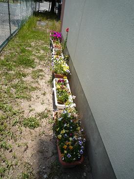 2009-5-4-1.jpg