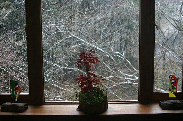 雪景色と店内の花-2 005