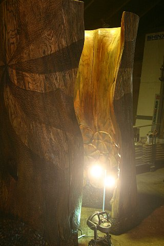樹霊と蓮 写真 008
