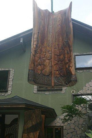 樹霊と蓮 写真 010