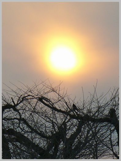 五稜郭の夕日1