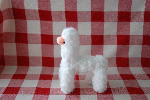 alpaca9-28.jpg