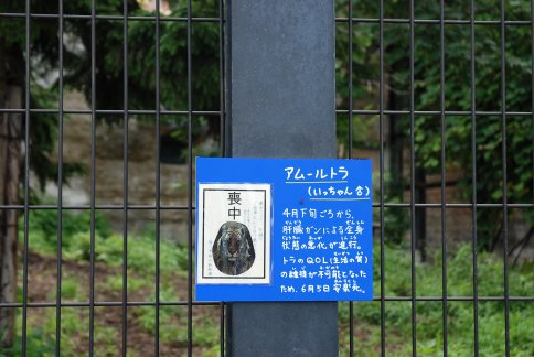 asahiyamazoo10-56.jpg