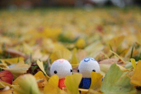 autumn5-4.jpg