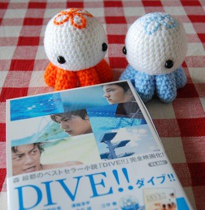 dive5-14.jpg