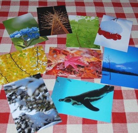 postcard6-1.jpg