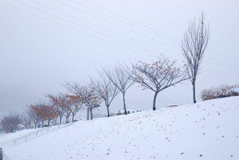 winter5-7.jpg