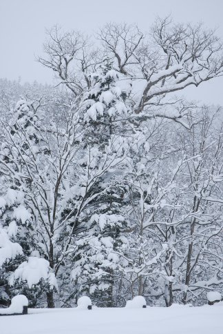 winter6-5.jpg